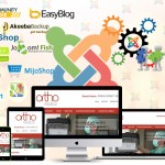 Make your website more functional with Joomla Extensions